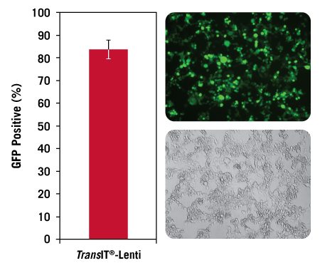 TransIT®-Lenti Transfection Reagent