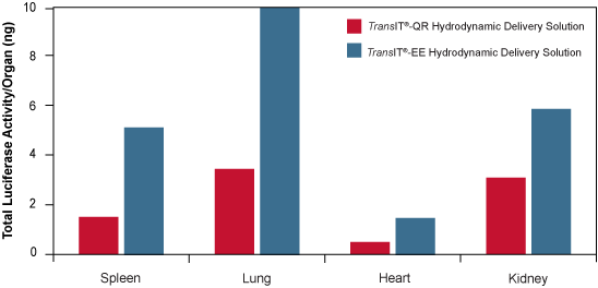 TransIT-EE Solution Leads to Enhanced Luciferase Expression in a Variety of Organs