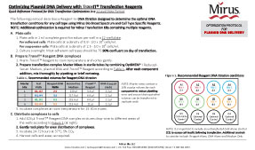 Transfection Optimization Protocol TransIT Transfection Reagent